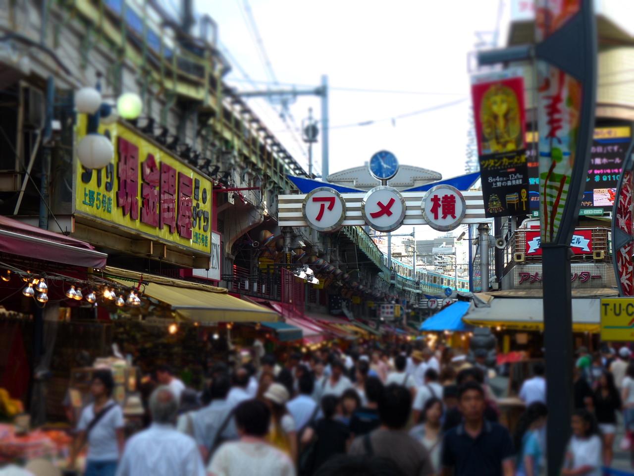 東京 1 日 観光 おすすめ