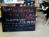 2011/5/12森下