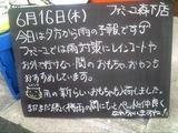 2011/6/16森下