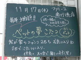 2011/11/17南行徳