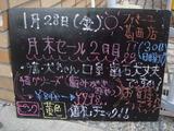 2011/01/28葛西
