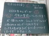 2011/9/16南行徳