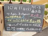 2011/10/11森下