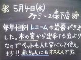 2011/5/4森下