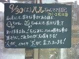 060930松江