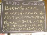 2012/4/20松江