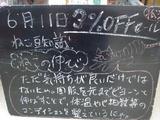 2010/06/11松江