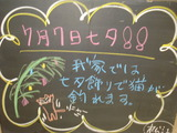 2012/07/07松江