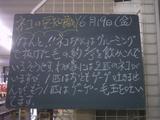 090619南行徳