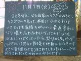 051101南葛西