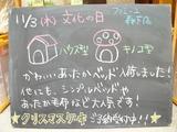 2011/11/3森下