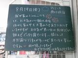2011/8/19南行徳