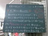 2012/9/4南行徳