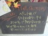 2011/11/9立石