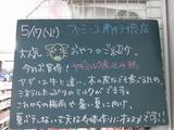 2011/5/17南行徳