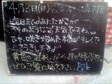 2011/04/03森下