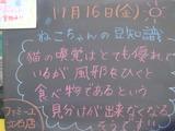 2012/11/16立石