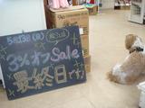 2012/5/13松江