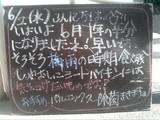 2010/6/2森下