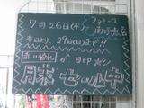 2012/7/26南行徳
