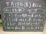 2012/5/18松江