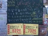 051205南行徳
