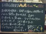 051206松江