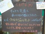2012/5/17立石