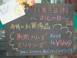 2011/11/3立石