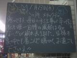 100113南行徳