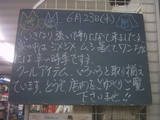 2010/6/23南行徳