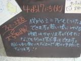 2012/4/17立石
