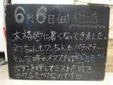 2010/6/6松江