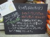 2011/6/14立石