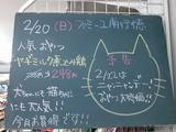 2011/2/20南行徳