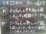 2010/09/25森下