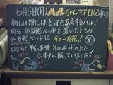 060605松江