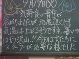 060919南行徳