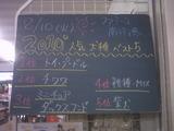 2010/08/10南行徳
