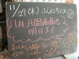 2012/11/29森下