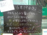 2010/06/19立石