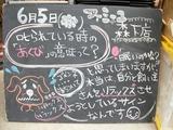 2012/6/5森下