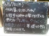 2010/6/17森下