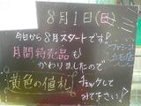 2010/8/1立石