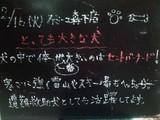2010/02/16森下