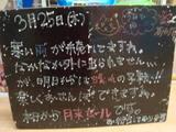 2010/3/25葛西