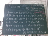 2012/1/20南行徳