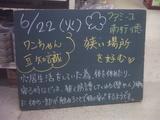 2010/06/22南行徳