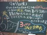 050909松江