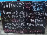 2010/11/19葛西